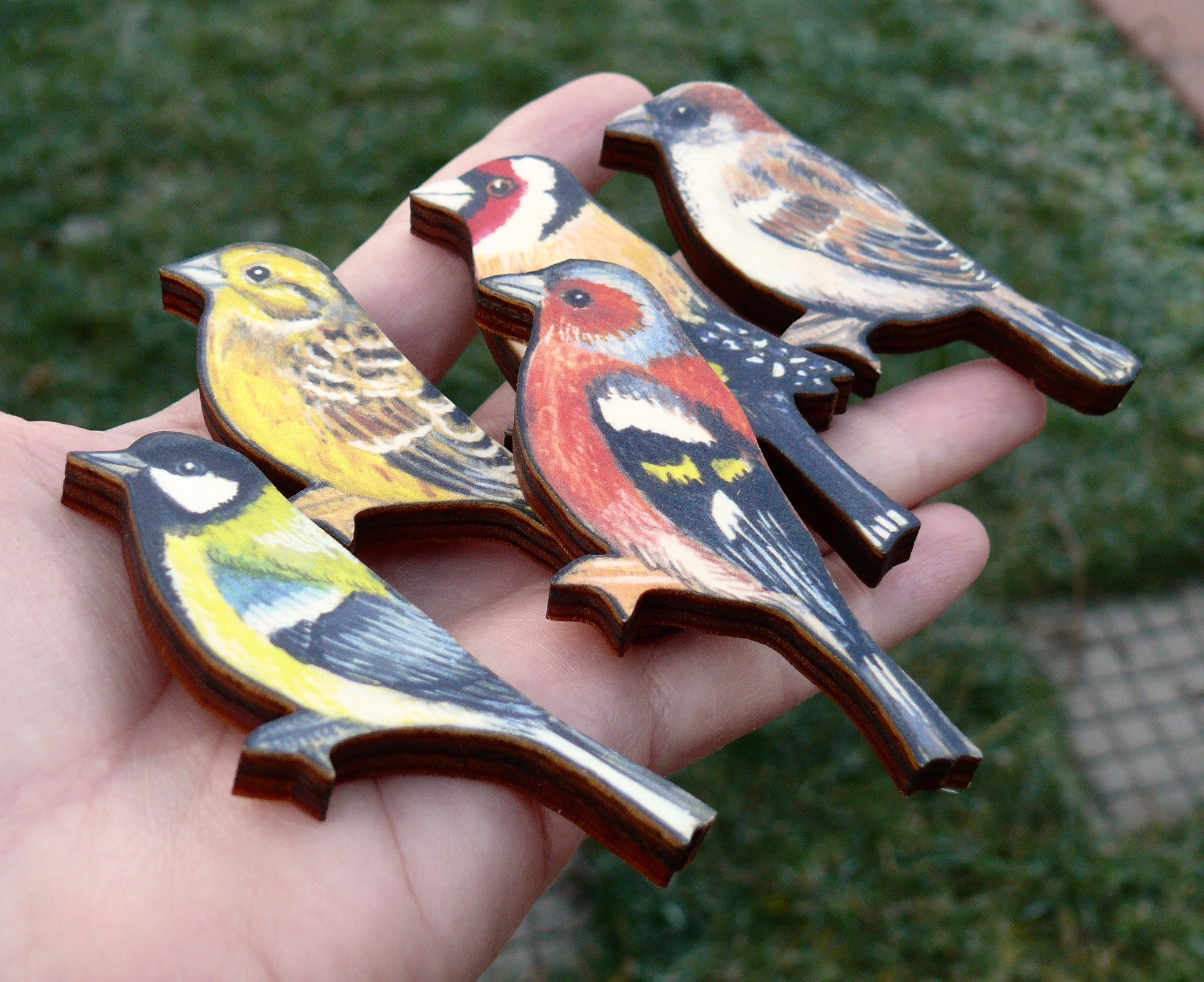 ptáčci1